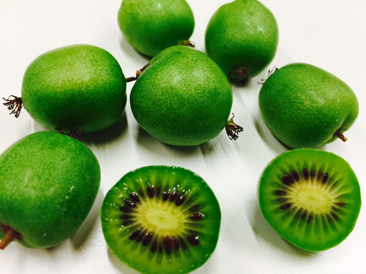 Thurgauer Mini Kiwis